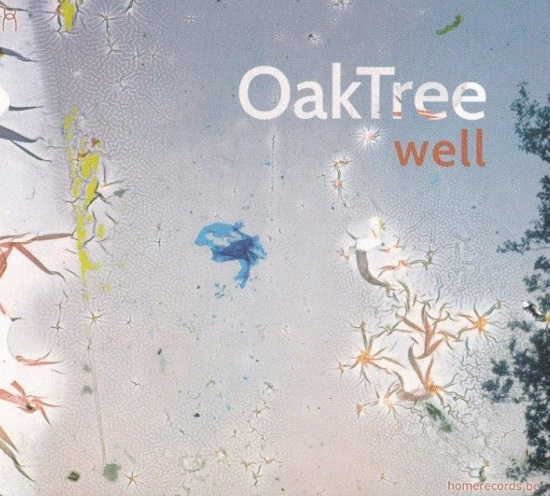 Oak Tree (feat. Michel Massot, Tcha Limberger, Kristof Hiriart) - Well