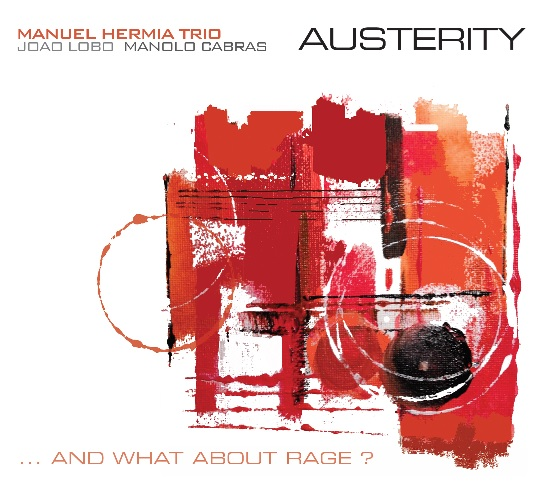 Manu Hermia Trio - Austerity...and what about rage? (f. dupuis-panther)
