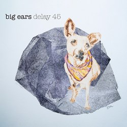 Delay 45 - big ears