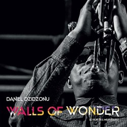 Daniel Dzidzonu – Walls Of Wonder