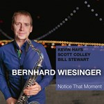 Bernhard Wiesinger  - Notice That Moment