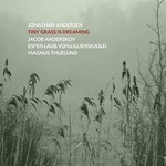 Jonathan Andersen – Tiny Grass Is Dreaming