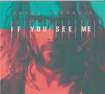 Dusan Jevtovic - If You See Me