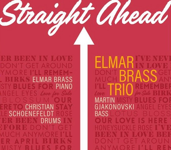 Elmar Braß Trio: Straight ahead